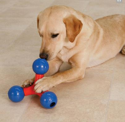 Juguetes interactivos para perros mascotas - Perros para tener en casa ...
