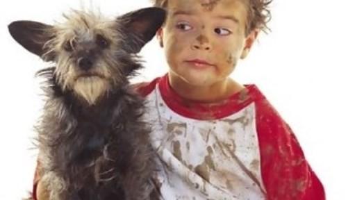 mascotas-para-niños1-524x288.jpg