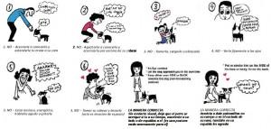 Cómo saludar correctamente a un perro