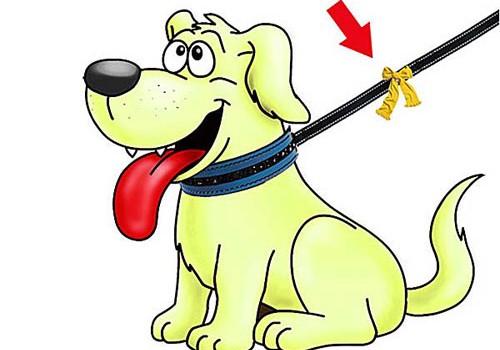 Proyecto del perro amarillo
